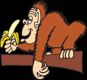 singe-banane
